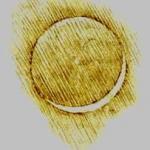Croquis de croissant lunaire et de lumière cendrée consigné de la main de Léonard de Vinci dans le codex Leicester