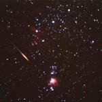 Une Léonide surprise dans les parages d'Orion en 2001