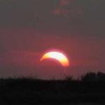 Eclipse partielle photographiée le 10 juin 2002 dans le Texas par un lecteur de Science @ Nasa