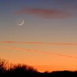La Lune et Mercure saisies non loin l'une de l'autre début janvier 2008