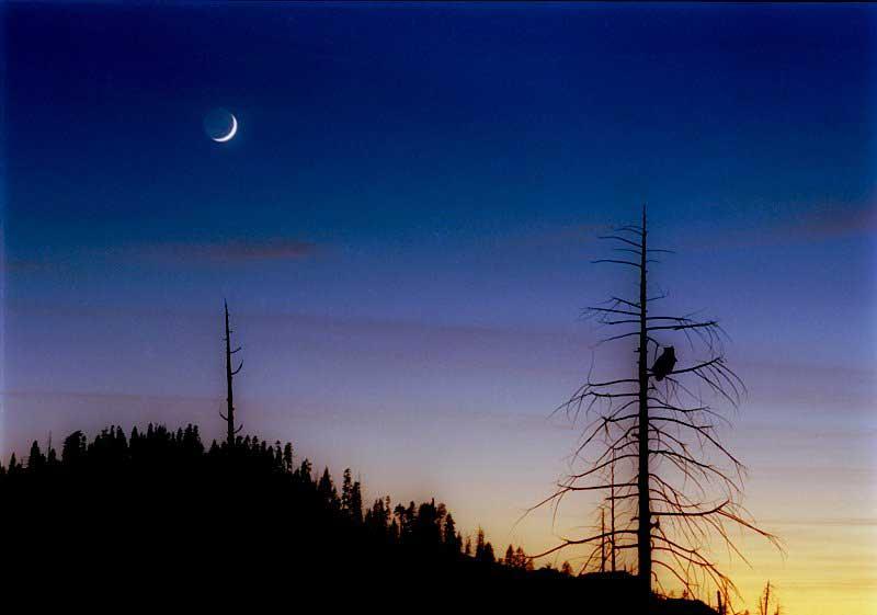 Croissant de lune et lumière cendrée photographiés au dessus du parc national de Yosemite en octobre 2004