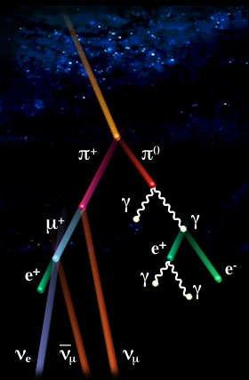 Schéma décrivant la cascade de réactions consécutive à l\'impact d\'un noyau atomique de grande énergie dans la haute atmosphère