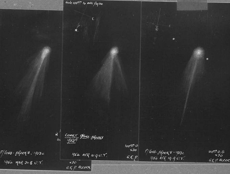 Dessins de la comète 12P/Pons Brooks lors de son passage de 1954